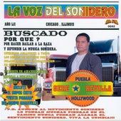 La Voz Del Sonidero (100% Exitos Sonideros) by Various Artists