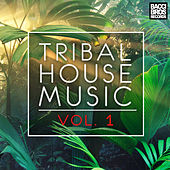 Play & Download Tribal House Music Vol. 1 by Various Artists | Napster