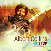 Live by Albert Collins