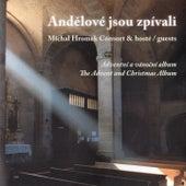 Play & Download Andělové jsou zpívali by Michal Hromek Consort | Napster