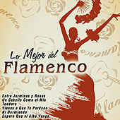 Play & Download Lo Mejor del Flamenco by Various Artists | Napster