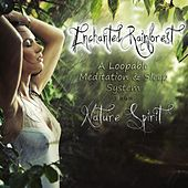 Enchanted Rainforest - A Loopable Meditation and Sleep System by Nature Spirit