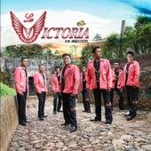 Play & Download Cuando el Sol Salga al Reves - Single by La Victoria de Mexico | Napster