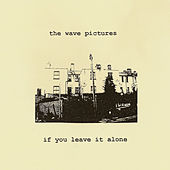 Play & Download If You Leave It Alone by The Wave Pictures | Napster