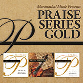 Play & Download Praise Series Gold by Various Artists | Napster