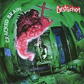 Cracked Brain by Destruction