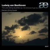 Beethoven: Works for String Quartet by Brentano String Quartet