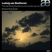 Play & Download Beethoven: Works for String Quartet by Brentano String Quartet | Napster
