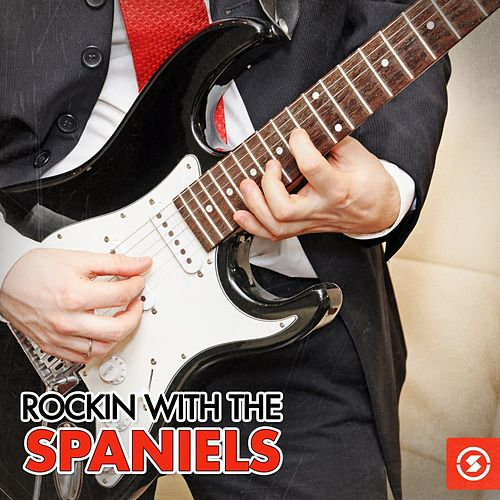 Play & Download Rockin' with The Spaniels by The Spaniels | Napster