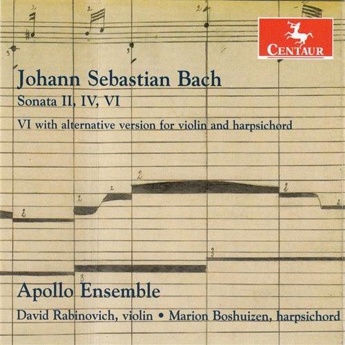 Play & Download J.S. Bach: Sonatas for Violin & Harpsichord by David Rabinovich | Napster