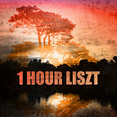 Play & Download 1 Hour Liszt by Various Artists | Napster