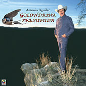 Play & Download Golondrina Presumida by Antonio Aguilar | Napster