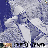 Play & Download Contigo En La Distancia by Antonio Aguilar | Napster