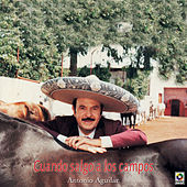 Play & Download Cuando Salgo A Los Campos by Antonio Aguilar | Napster