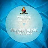 Secret Music Factory by Various Artists