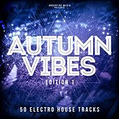 Autumn Vibes - Edition 1 by Various Artists
