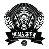 Play & Download Numa Crew LP Sampler by Numa Crew | Napster