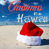 Play & Download Christmas in Hawaii - 20 Hawaiian Favorites for Holiday Paradise Like Silent Night, Twelve Days of Christmas, Deck the Halls, Ave Maria, White Christmas, Auld Lang Syne, And More by Various Artists | Napster