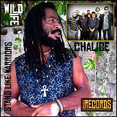 Play & Download Stand Like Warriors by Wild Life | Napster