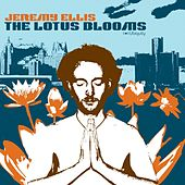 Lotus Blooms by Jeremy Ellis