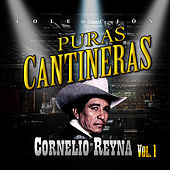 Play & Download Puras Cantineras, Vol. 1 by Cornelio Reyna | Napster