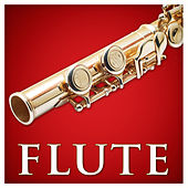 Play & Download Flute (Red Classics) by Various Artists | Napster