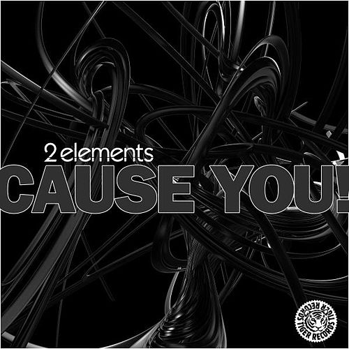 Cause You! by 2Elements