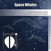 Space Whales by Imaginacoustics