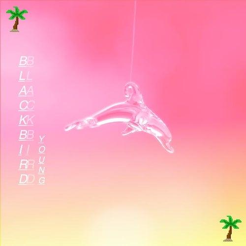 Young (feat. Britt Warner) by Blackbird Blackbird