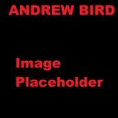 Three White Horses by Andrew Bird
