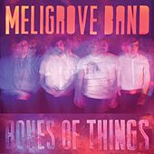 Play & Download Bones of Things by The Meligrove Band | Napster