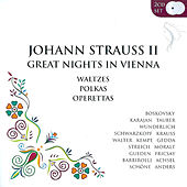 Play & Download Great Nights In Vienna by Various Artists | Napster