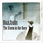 The Storm in the Barn by Black Prairie