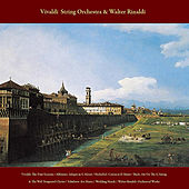 Play & Download Vivaldi: the Four Seasons / Albinoni: Adagio in G Minor / Pachelbel: Canon in D Major / Bach: Air On the G String & the Well -Tempered Clavier / Schubert: Ave Maria / Wedding March / Here Comes the Bride / Walter Rinaldi: Orchestral Works by Vivaldi String Orchestra | Napster