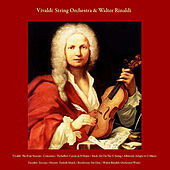 Play & Download Vivaldi: the Four Seasons & Concertos / Pachelbel: Canon in D Major / Bach: Air On the G String / Albinoni: Adagio in G Minor / Paradisi: Toccata / Mozart: Turkish March / Beethoven: Fur Elise / Walter Rinaldi: Orchestral Works / Wedding March by Vivaldi String Orchestra | Napster