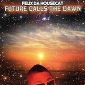 Play & Download Future Calls The Dawn by Felix Da Housecat | Napster