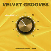 Velvet Grooves Volume Liberante! by Various Artists