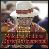 Melodias Andinas - Musica Instrumental de Various Artists