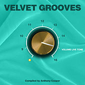 Play & Download Velvet Grooves Volume Livetone! by Various Artists | Napster