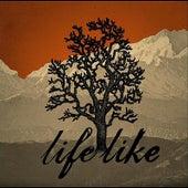 Life Like by Lifelike