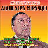 Play & Download Ave Que Pasas Volando by Atahualpa Yupanqui | Napster