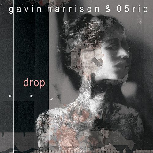 Drop by Gavin Harrison