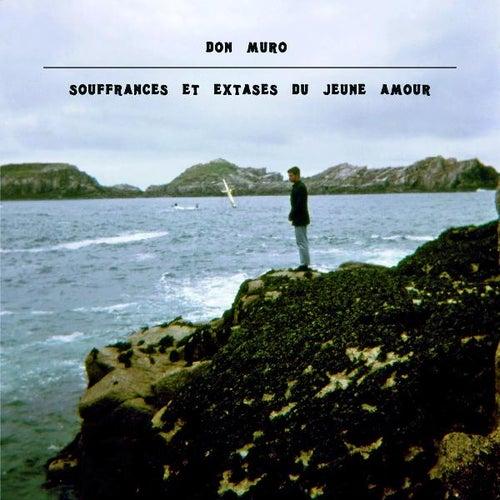 Souffrances Et Extases Du Jeune Amour by Don Muro