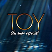 Play & Download Um Amor Especial by Toy | Napster