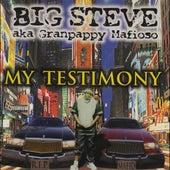 My Testimony by Big Steve