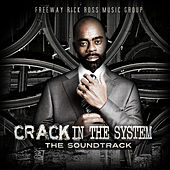 Play & Download Crack in the System by Various Artists | Napster