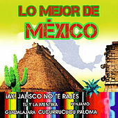 Play & Download Lo Mejor de México by Various Artists | Napster
