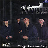 Play & Download Llego La Novillada by Los Novillos Del Norte | Napster