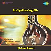 Play & Download Bindiya Chamkegi Mix by Various Artists | Napster