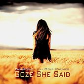 Play & Download She Said by Christophe Goze | Napster